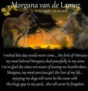 Morgana memoriam